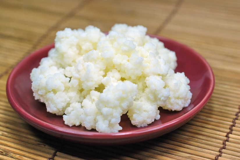 An Introduction To Kefir